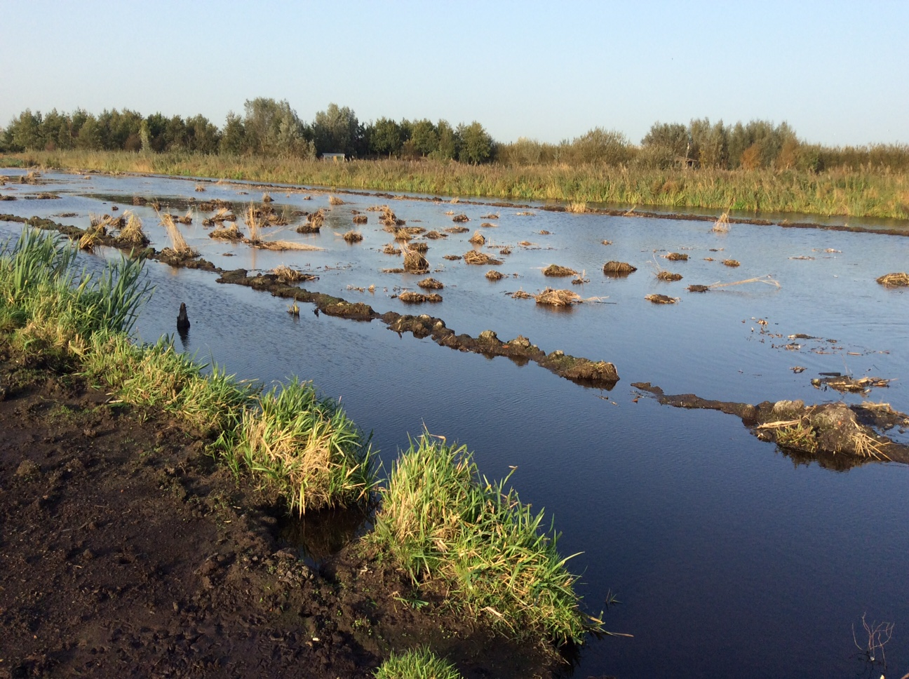 landschapsfonds alphen aan den rijn e.o. – De educatieve inrichting van het project IJsvogel